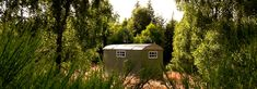 Ace Hideaways, Forres, Morayshire, The Highlands, Scotland. Glamping. Camping. Outdoors. Countryside. Holiday. Travel. UK.