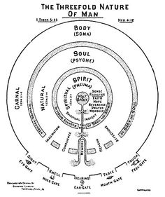 Watchman Nee and Witness Lee are among those who have seen and taught that man is a tripartite being consisting of body, soul, and spirit. Watchman Nee, Spirit Soul, Spirit Science, Spiritus, Mystique, Book Of Shadows, Sacred Geometry, Prayers, Knowledge