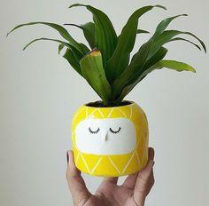 A artista Jennifer Hinkle criou esses pequeninos vasos de cerâmica que ganham um visual engraçadinho quando neles são colocadas plantas. Em sua loja, Hinkleville, Jennifer compartilha, além dos vasinhos, canecas, bijuterias e acessórios de Toronto para o mundo. |via