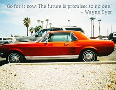 """""""Go for it now. The future is promised to no one."""" – Wayne Dyer"""