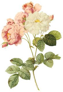 Free printable vintage rose. Free ornaments, stencils, labels, printable art