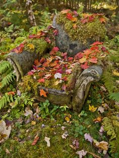 stone chair with autumn leaves