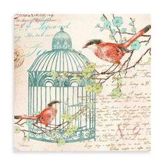 Fabrice de Villeneuve Studio Birdsong Delight Wall Art