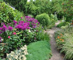 Three Dogs in a Garden: In Search of Late Bloomers, Part 1: Phlox..refer combos