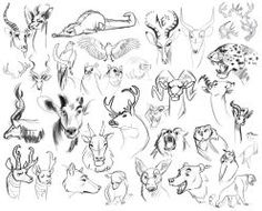 Sketch Dump: Draw All the Animals by Turtle-Arts