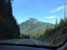 Road to Tofino, Vancouver Island, Canada