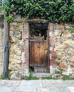 Doors around the world.  #doors #doorsofinstagram #doorsworldwide #doorsaroundtheworld #wooddoor #citys #city #citylove #sanfrancisco #cityview #citylife #sanfranciscobay #sanfrancitizens #sinfrancisco #california_igers #california #californialove #calilife #puerta #plants #bricks #streetart #street #streetview #russianhill #northbeach #sf #ca