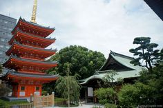 Here are a few pictures taken in Fukuoka: