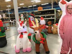 Home Decor Store, Dinosaur Stuffed Animal, Toys, Christmas, Animals, House Decor Shop, Activity Toys, Xmas, Animales