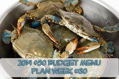 2014 $50 Budget Menu Plan Week #30