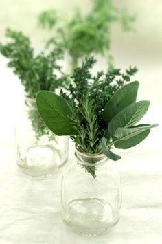Herbs in a jar as part of centrepieces. Easy and simple in summer when the herbs are free… We could grow lots of herbs at the cabin