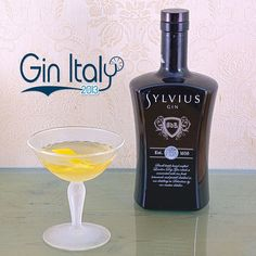 #SylviusGin #MartiniCocktail    #Gin #Blog  #Blogger  #Photography #Cocktail #GinLovers #Bar #Ginebra #Drinks #Drink #Booze #Cocktails #Spirits #GinTonic #GinOClock #LondonDryGin #Juniper #HomeBar #GinandTonic #GinTime #Tonic #GinItaly #Ginspiration #Ginstagram #GinofInstagram #GinsofInstagram