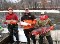 Invasive species: Commercial fishermen hold Asian carp caught March 1 in Mississippi River near Winona. From left to right, the fish are grass carp, silver carp, and bighead carp.  Not only can Asian carp lay the smack down on humans, but they mess up ecosystems as well. Bighead carp can weigh up to 100 pounds, silver carp up to 60, and the voracious eaters can easily out-compete native fish for scarce food supplies.  http://blogs.citypages.com/blotter/2012/03/asian_carp_are_in_minnesota.php