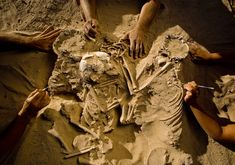 Six thousand years ago, a mother and two children died at the same time and were buried here holding hands. Someone obviously cared a great ...