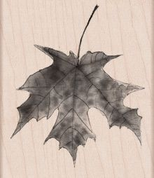 Hero Arts Rubber Stamp LISA'S PAINTED MAPLE LEAF h5867 at Simon Says STAMP!