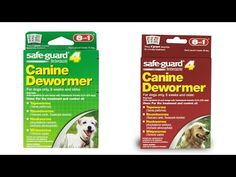 Top 5 Best Dewormer for Dogs Reviews 2016 Best Dog Dewormer Best Puppy D...
