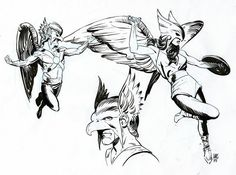 Hawkman and Hawkgirl by Paul Smith