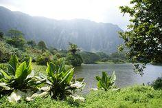 Hoomaluhia Botanical Gardens on Oahu, Hawaii by Laura Radniecki