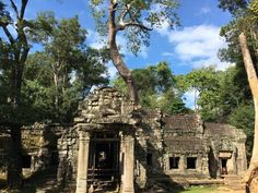 The Amazing Angkor Wat is just one of the many temples in Angkor Archaelogical Park in Siem Reap, Cambodia. Find where to capture an amazing Angkor Wat sunrise Ta Prohm, Siem Reap, Angkor Wat, Us Travel, Cambodia, Temple, Sunrise, Mansions, Park