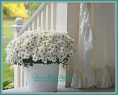Always, ALWAYS find a pretty container to cover up those plastic pots! If not enamelware, a basket, large bowl, even burlap tied with twine. it's a Beach Cottage Life. Shabby Cottage, Coastal Cottage, Coastal Decor, Cottage Design, Cottage Style, Flower Containers, Plastic Pots, Daisy Chain, Large Bowl