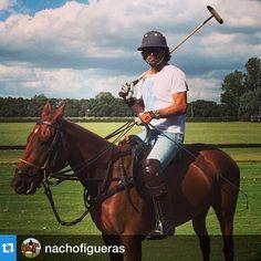 #Repost @nachofigueras with @repostapp.・・・Green horses today. On @criayatay St.  Regis (Quattro-Chismoso) Caballos nuevos. #criayatay