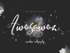 Awesawez is a clean and great free Font script. Download a playful yet elegant hand-written typeface with extra bouncy curves and loops.