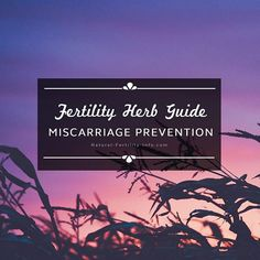 We've created this guide to show you time-honored herbs your midwife, herbalist, or natural healthcare practitioner may suggest to you if you are experiencing a miscarriage.    To find article ---> Click on link in Bio @naturalfertilityinfo