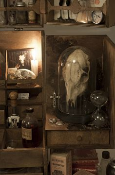 Cabinet_de_curiositE & Plus Cabinet The post Cabinet_curiositE & appeared first on Trending Hair styles. Arte Peculiar, Goth Home, Cabinet Of Curiosities, Witch House, Gothic House, Victorian Gothic, Witch Aesthetic, Arte Horror, Gothic Home Decor
