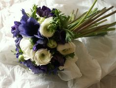 Hand tied posy of Purple Anemones and White Ranunculus
