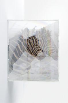 PixCell_Saturation[部分]、2004、<br>シリコーンオイル、顔料、エアーポンプ、蛍光灯、アクリル、270 x 526 x 526 cm