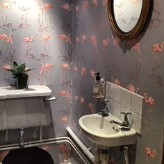 Love this client image of our Nakuru wallpaper in a downstairs loo. #flamingos #pink #wallpaper #wallcoverings #drawing #illustration #design #detail #interiors #inspiration #homedecor #bathroom #interiordesign #luxury #lifestyle