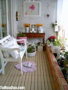 mini jardin sur le bord de la fenêtre