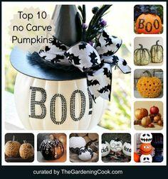 Top 10 No Carve Pumpkin Projects