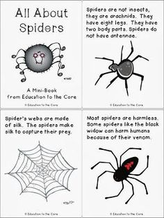 Spiders FREE Mini-Book and Writing Reflection - Education to the Core : Education to the Core: Spiders: A FREE Mini-Book and Writing Reflection Fall Preschool, Kindergarten Science, Science Activities, Spider Art Preschool, Science Centers, Preschool Learning, Teaching Science, Early Learning, Life Science