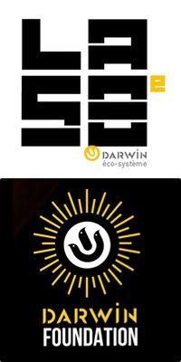 logo Foundation, Darwin, Calm, Logos, Artwork, Work Of Art, Auguste Rodin Artwork, Logo, Artworks