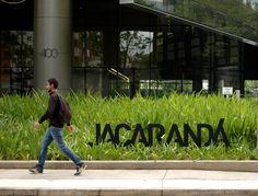 jacarandá01
