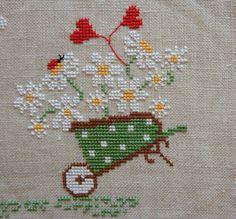 Wheel barrow of daisys