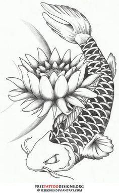 FINALLY the perfect koi! Black and white koi then color in the flower, if any… Koi Tattoo Design, Lotus Flower Tattoo Design, Lotus Design, Koi Fish Drawing, Fish Drawings, Tattoo Drawings, Japanese Koi Fish Tattoo, Pez Koi Tattoo, Tiki Tattoo