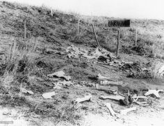 Graves of unknown soldiers and the ridge where the last stand was made on Custer's Battlefield on the Little Big Horn.
