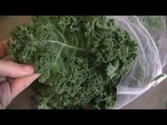 How To: Make Homemade Kale Chips in the oven