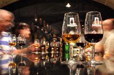 The 5 key tips for tasting wine (Los 5 consejos primordiales para catar un vino) - Blog | La Vinatería de don Justo
