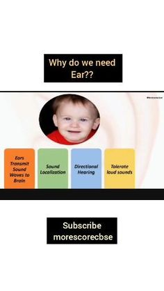 Check out link 👇 for basics of human ear for class 5 kids explained easily Ear Function, Ear Structure, Human Ear, Science Topics, 5 Kids, Question And Answer, Link, Check