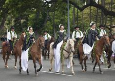 How to Take Your Horse in a Parade Safely: Parade horses need to be calm and obedient. Horse Training Tips, Pony, Take That, Calm, Horses, Animals, Pony Horse, Animales, Animaux