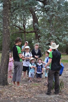 Gardens Education Rangers show off the features of eucalypts during the Find30 guided walk at the Gardens Summer Sounds concert series.