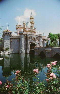Perfection- Disney World and also Disneyland   ctc