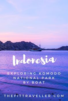 Exploring Komodo National Park in Indonesia should be at the top of your travel list when exploring Flores. From snorkelling in crystal clear waters, pink sand beaches, a breathtaking hike and meeting the famous Komodo Dragon.