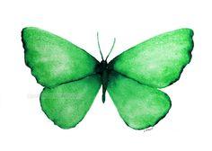 emerald green butterfly archival 5 x 7 print of by carolsapp, $15.00