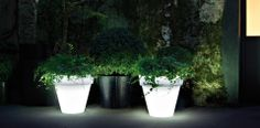 For those who enjoy being in the garden on a warm, balmy evening, Serralunga have a great range of illuminated planters, furniture and outdoor lights too.
