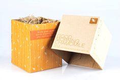 15b-eco-friendly-tea-packaging-design.jpg (600×402)