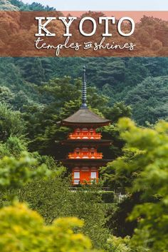 There are thousands of gorgeous temples and shrines scattered throughout Kyoto Japan making it one of the most zen places on earth!